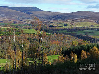 Photograph - Ben Rinnes - Autumn by Phil Banks
