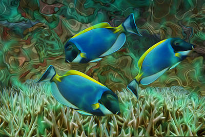 Tropical Fish Painting - Beneath The Waves Series by Jack Zulli