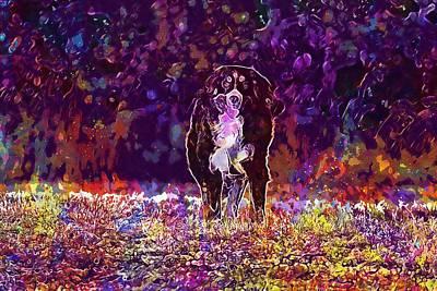 Cattle Dog Digital Art - Bernese Cattle Dog Bitch  by PixBreak Art
