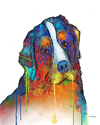 Digital Art - Bernese Mountain Dog by Marlene Watson