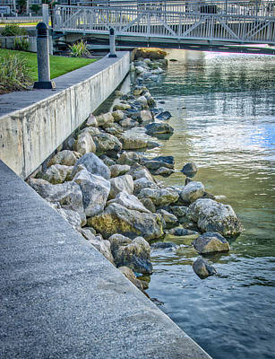 Photograph - Beside The Marina by Jane Luxton