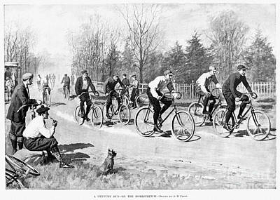 Photograph - Bicycle Race, 1896 by Granger