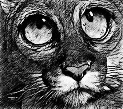 Digital Art - Big Eye Leopard by Artful Oasis