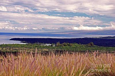 Big Island Landscape 1 Art Print