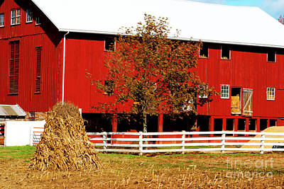 Big Red Pa Barn Print by Paul W Faust - Impressions of Light
