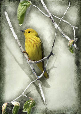 Digital Art - Bird - Yellow Warbler Art by Ron Grafe