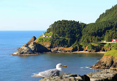 Photograph - Birds Eye View Of Heceta Head Lighthouse  3155 by Jack Schultz