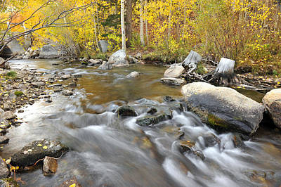 Bishop Creek In The Fall Art Print by Dung Ma