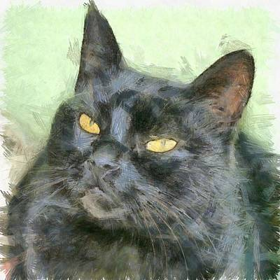 Drawing - Black Cat by Tracey Harrington-Simpson