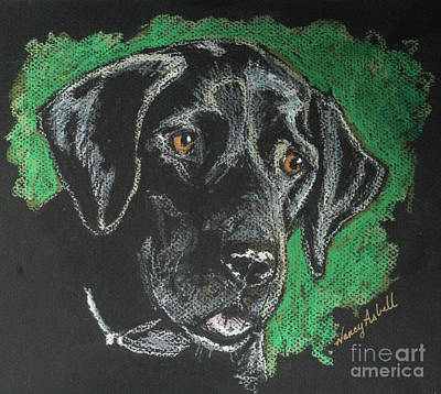 Nancy Asbell Painting - Black Lab Pastel by Michele Hollister - for Nancy Asbell