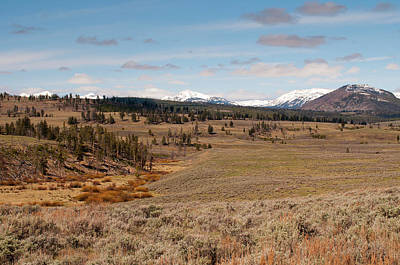 Photograph - Blacktail Plateau by Steve Stuller
