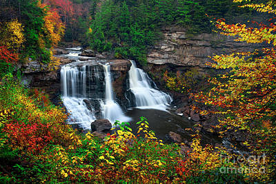 Photograph - Blackwater Falls State Park by Emmanuel Panagiotakis