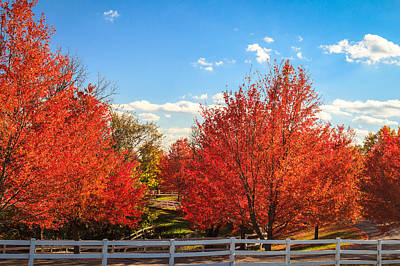 Photograph - Blazing Red Fall Color In Galena by Joni Eskridge