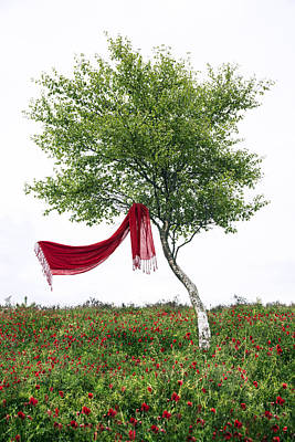 Blowing In The Wind Art Print by Joana Kruse