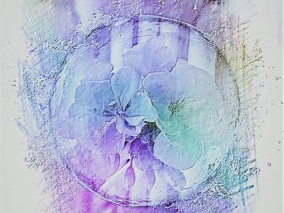 Digital Art - Blue Geranium by Nancy Pauling