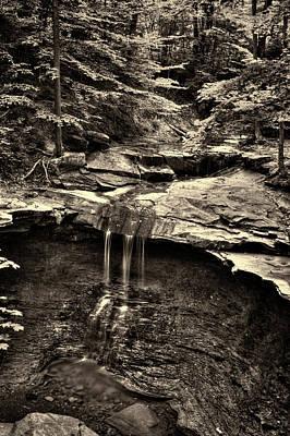 Photograph - Blue Hen Falls Bw by Roger Passman