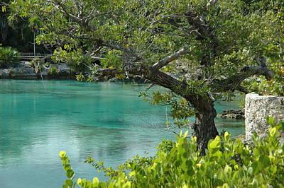 Photograph - Blue Lagoon by Lori Mellen-Pagliaro