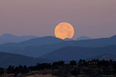Photograph - Blue Moon by Trent Mallett