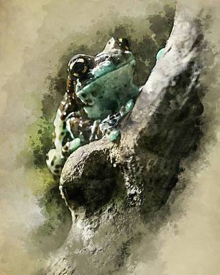 Digital Art - Blue Tree Frog by Jaroslaw Blaminsky