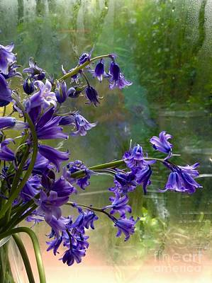 Photograph - Bluebells In My Garden Window 3 by Joan-Violet Stretch