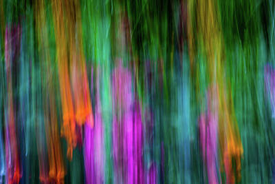 Photograph - Blurred #3 by Michael Niessen