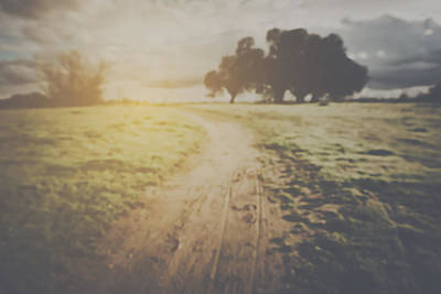 Nature Photograph - Blurred Nature Background With Instagram Style Filter by Brandon Bourdages