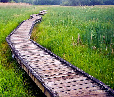 Photograph - Boardwalk  by Glenn Gordon