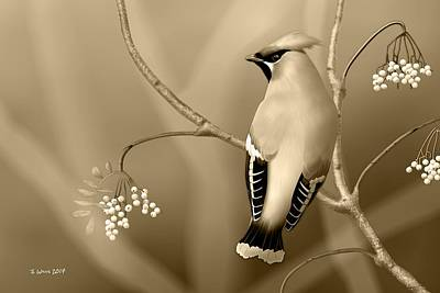 Digital Art - Bohemian Waxwing In Sepia by John Wills