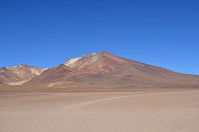 Photograph - Bolivian Desert by Sandy Taylor