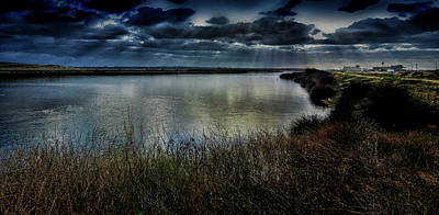 Photograph - Bolsa Chica Wetlands by Joseph Hollingsworth