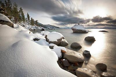 Photograph - Bonsai Dream by Scott Warner