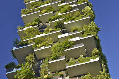 Photograph - Bosco Verticale Milan Italy by Marek Stepan