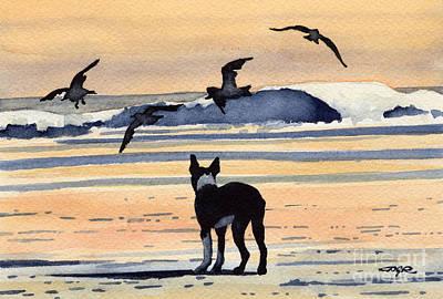 Boston Terrier Sunset Art Print by David Rogers