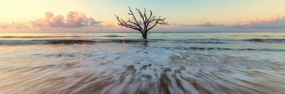 Photograph - Botany Bay Morning by Stefan Mazzola