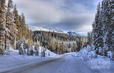 Bow Valley Parkway Winter Conditions Art Print