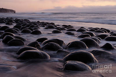 Photograph - Bowling Ball Beach California by Bob Christopher