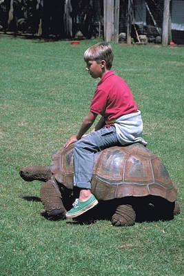 Edward Hopper - Boy rides Tortoise in Kenya by Carl Purcell