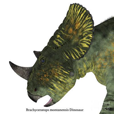 Montana Digital Art - Brachyceratops Dinosaur Head by Corey Ford