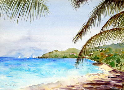 Painting - Brewers Bay Beach by Diane Kirk