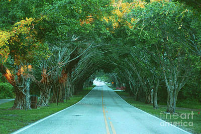 Photograph - Bridge Road by Richard Nickson