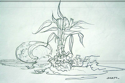 Drawing - Broken Pot Bamboo by Justin Hiatt