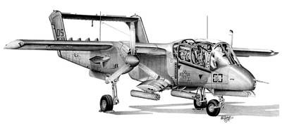 Drawing - Bronco by Lyle Brown