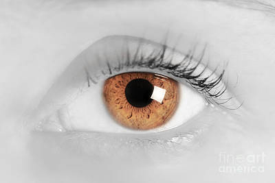 Glamour Optics Photograph - Brown Eye Of A Young Woman by Michal Bednarek