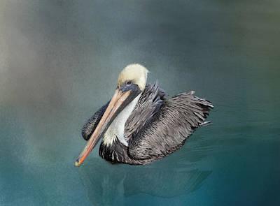Brown Pelican1 Art Print