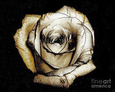 Art Print featuring the photograph Brown Rose - Digital Painting by Merton Allen