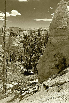 Photograph - Bryce 1 by Pete Hellmann