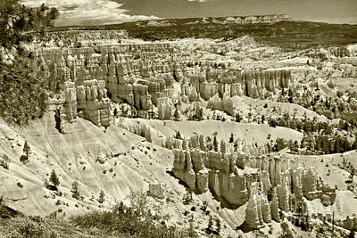 Photograph - Bryce 4 by Pete Hellmann
