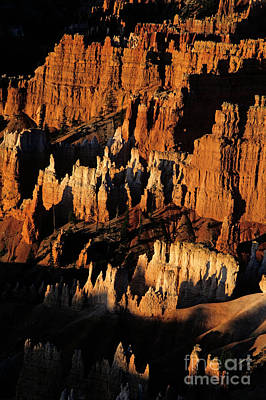 Photograph - Bryce Canyon National Park by Jim Corwin