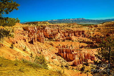 Photograph - Bryce Canyon  by Robert Bales