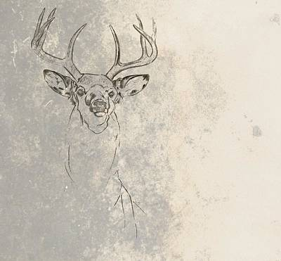 Photograph - Buck Unfinished by JAMART Photography